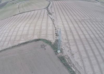 Revisión de cultivos